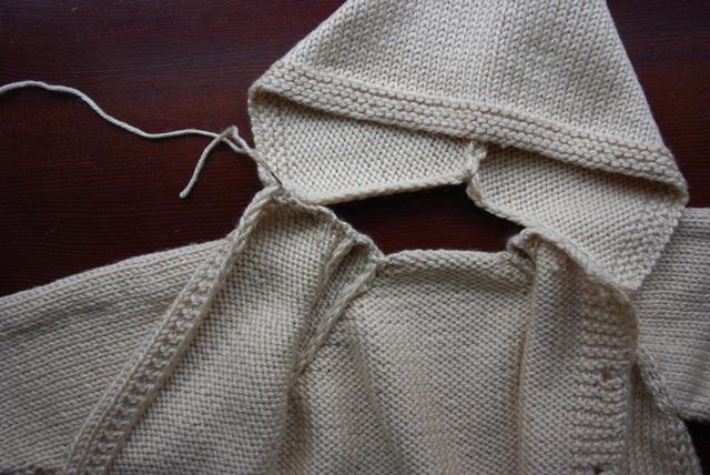 Megztinio su gobtuvu mezgimas